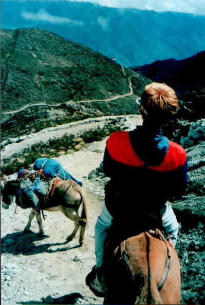 Riding horses in the mountains of Western Venezuela  -- its rough!