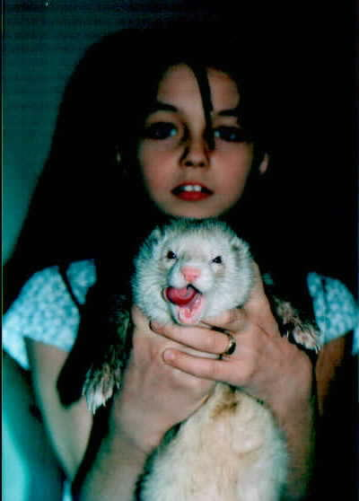 Ferret  --- did you know they play with cats?